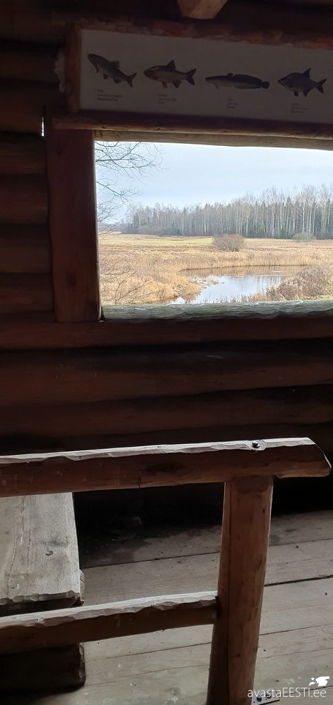 Altmetsa vaatetorn Kirna matkarada (Marko Kaldur)