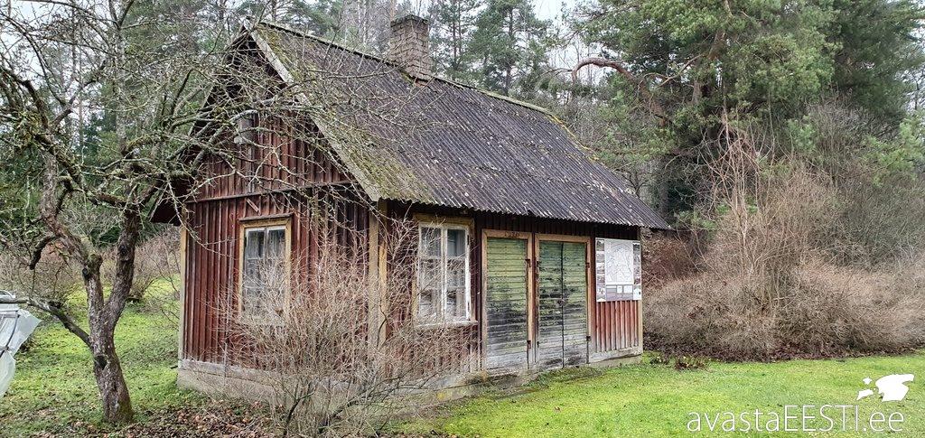 Rohelised Rööpad Sinialliku-Viljandi (Marko Kaldur)