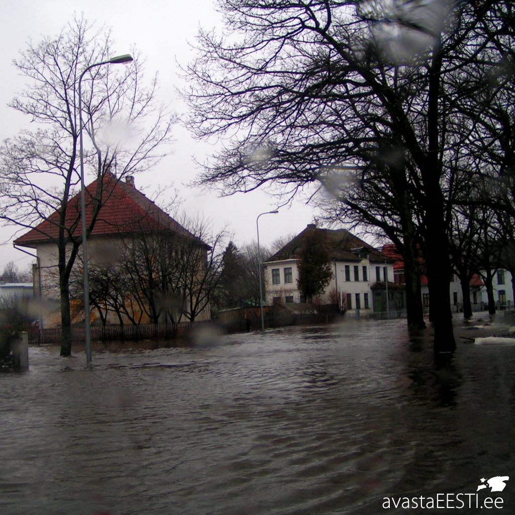 Jaanuaritorm 2005 (Marko Kaldur)
