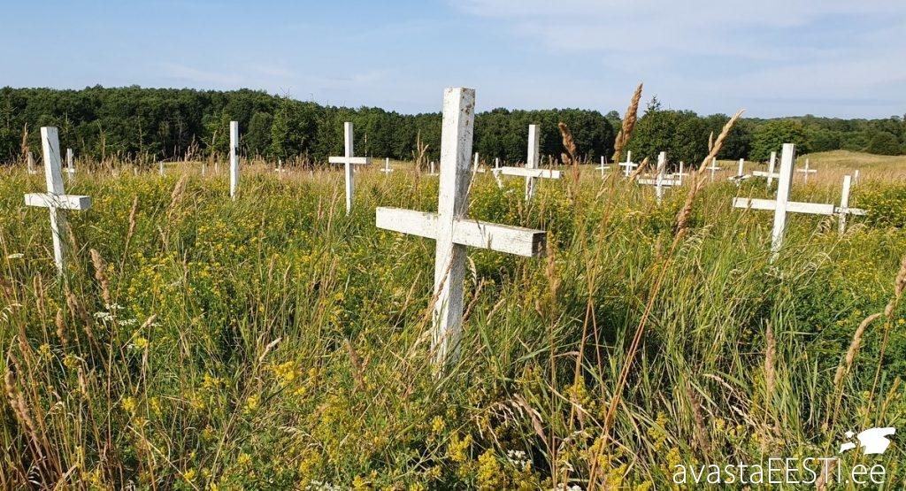 Aa hüljatud vanurite kalmistu (Marko Kaldur)