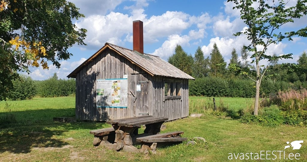 Edela-Eesti automatk (Marko Kaldur)