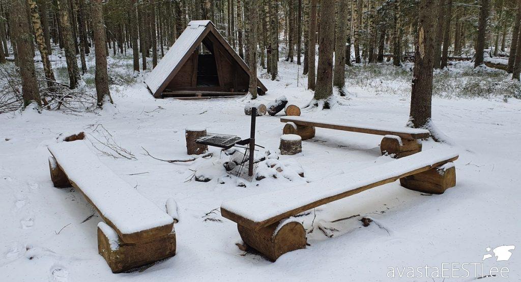 Metsavenna laagriplats (Marko Kaldur)